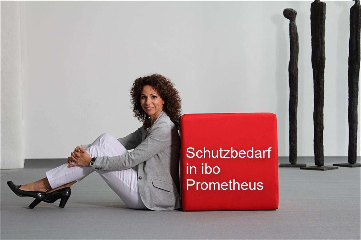 Schutzbedarf in ibo Prometheus