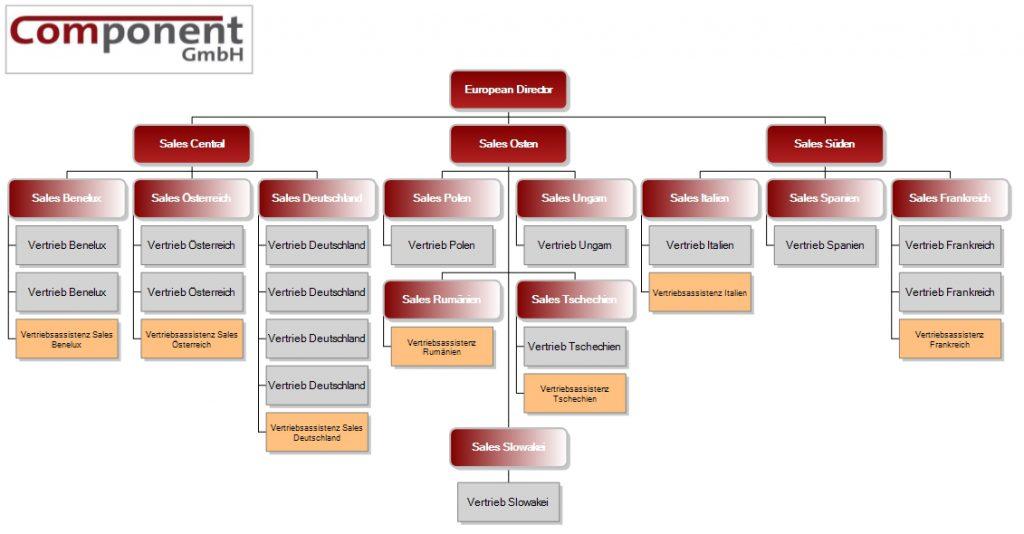 Organigramm einer Vertriebsabteilung mit unterschiedlicher Struktur im Rahmen der Assistenzen